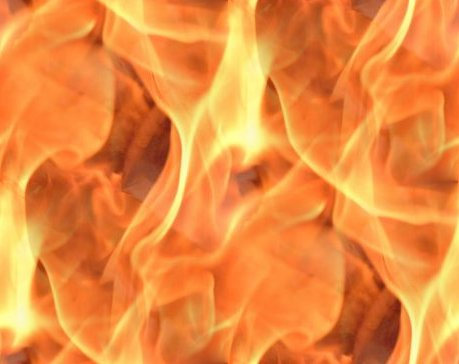 Seamless Flames Background Or Wallpaper Image Free