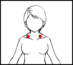 鎖骨リンパ節