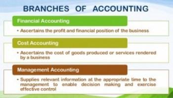 Basic Auditing MCQs
