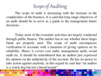 Audit Scope