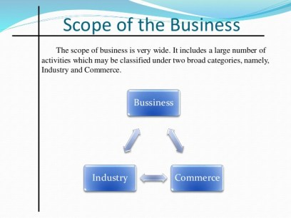 scope of business organization The other way of viewing the scope of e-business is to scrutinize it in terms of people or parties involved in electronic  corporate organization, finance and.