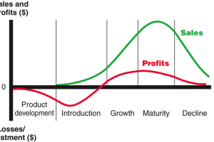Product Life Cycle and its Stages with Examples