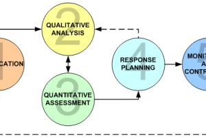 risk-management-steps