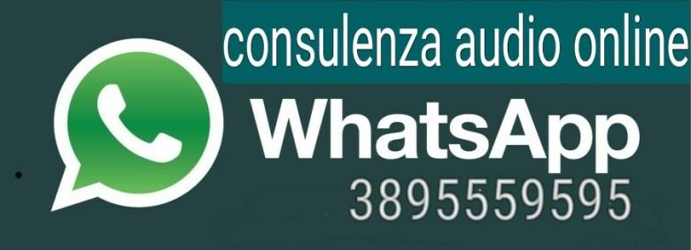 consulenza fiscale online su Whatsapp