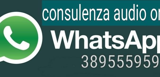 consulenza fiscale audio su Whatsapp
