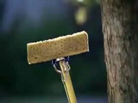 Flower Delivery | Swiffer WetJet Commercial Song