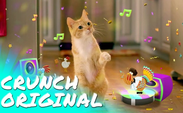 Get the Party Started! | Friskies Party Mix Treats Commercial Song
