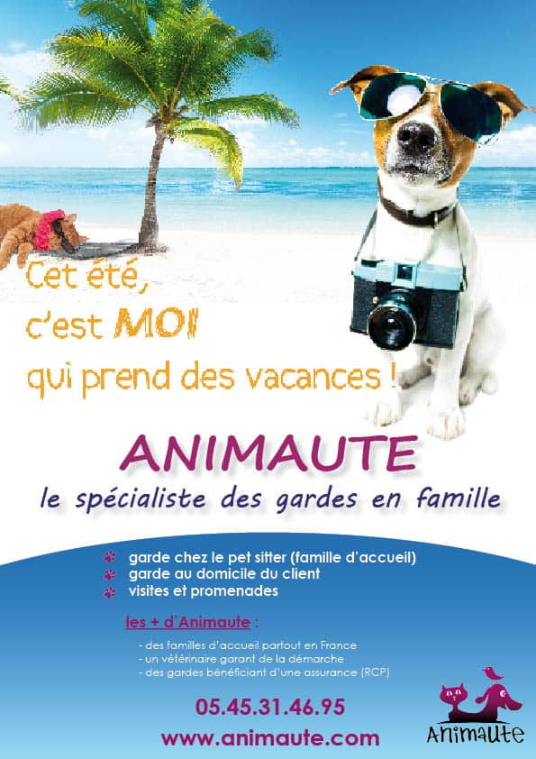 flyer animaute