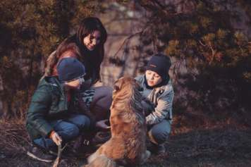 Children feeding a dog