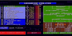 Sensible world of soccer 4