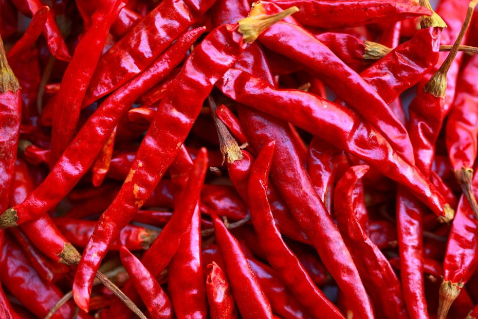 Can spicy food cause stomach ulcers?