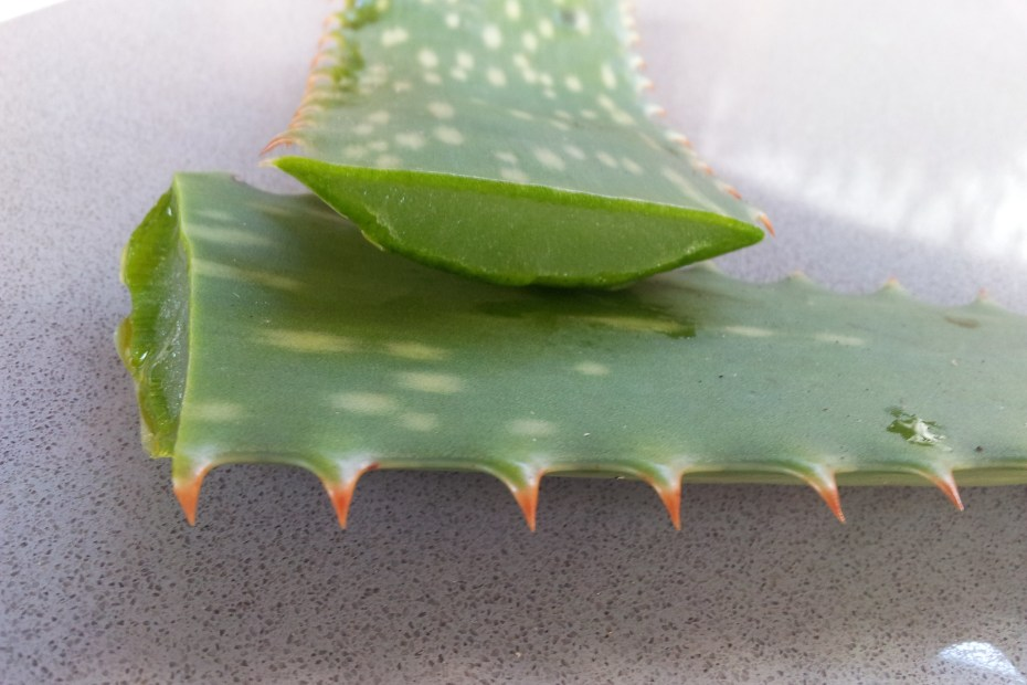Using aloe vera to remove wrinkles and other skin related issues