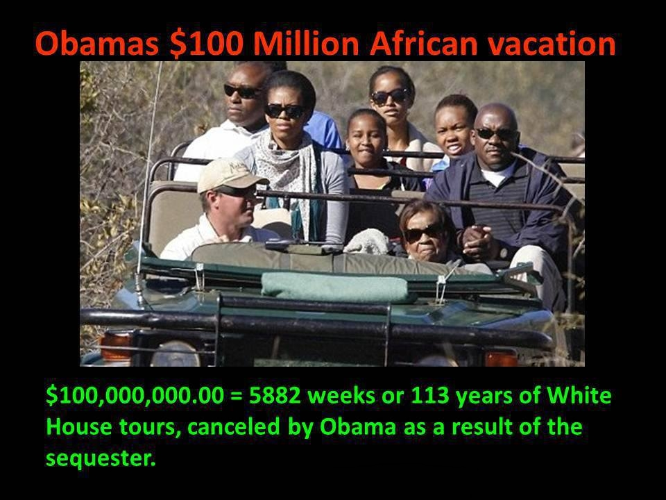 Image result for michelle obama african vacation