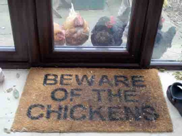 Redneck Home Security