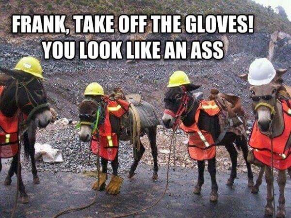Take Off The Gloves you look like an ass