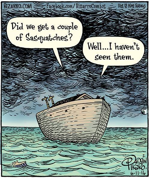 meanwhile-on-the-ark