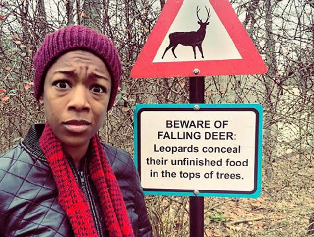 Beware of Falling Deer