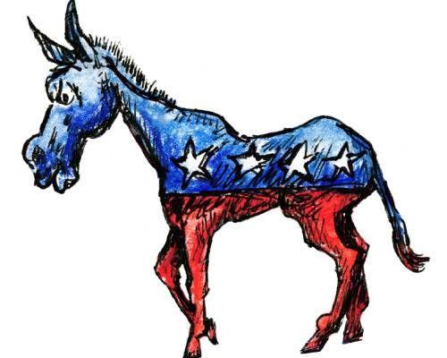 22 Ways To Be A Good Democrat