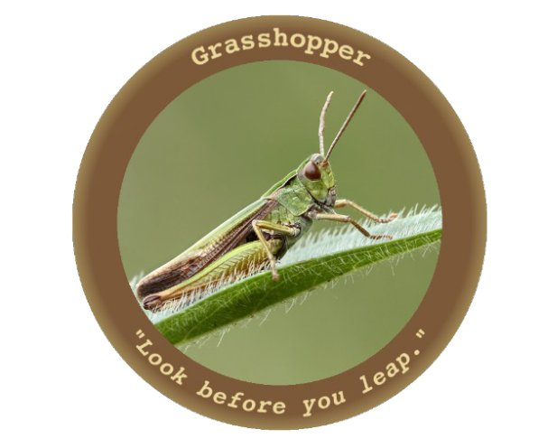 "Wikileaks: CIA Malware For Windows ""Grasshopper"""