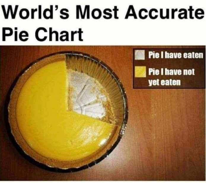 Picture Of The Day: The Most Accurate Pie Chart