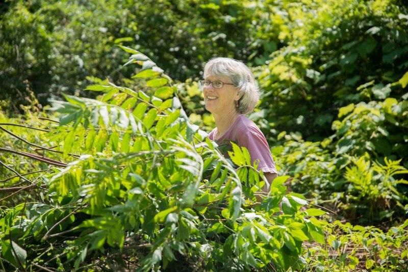 Master Gardener Judy Gatland