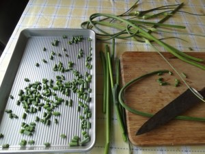Preparing garlic scapes for the freezer