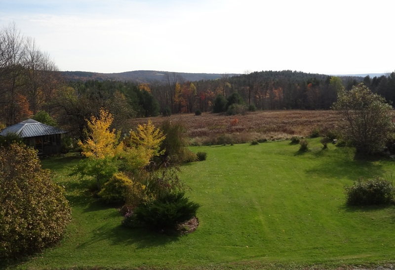 View from the Bedroom Window October 28, 2014