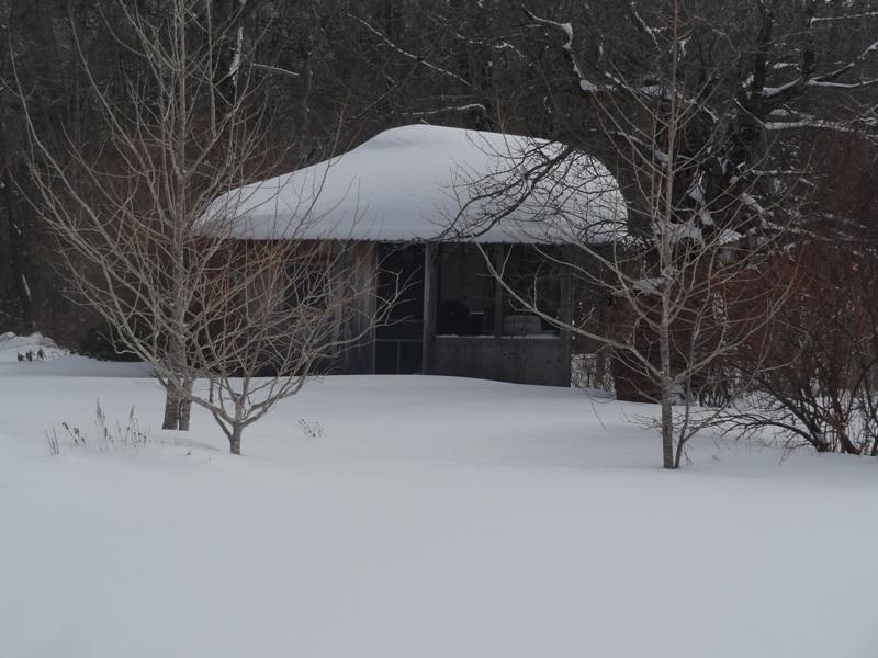 Cottage Ornee February 10, 2015