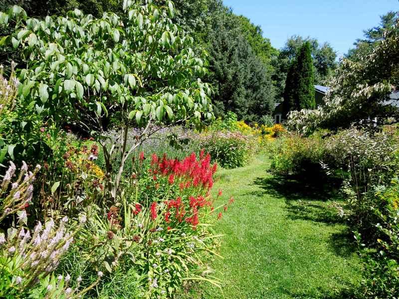 Billu0027s Butterfly Garden Photo By Bill Benner