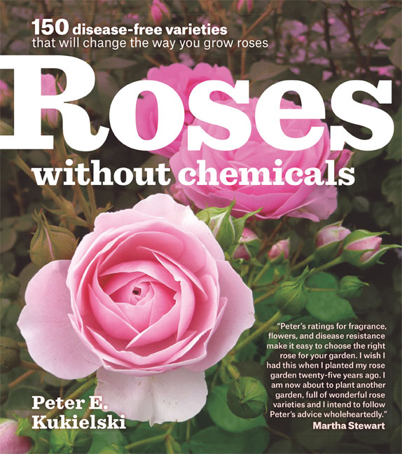 Roses Without Chemicals by Peter Kukiuelski