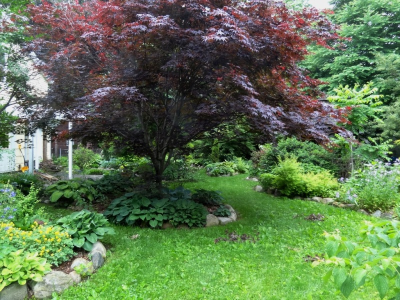 Fabulous garden on the 2014 Greenfield Garden Club tour