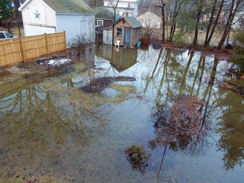 Reflections on the flooded garden