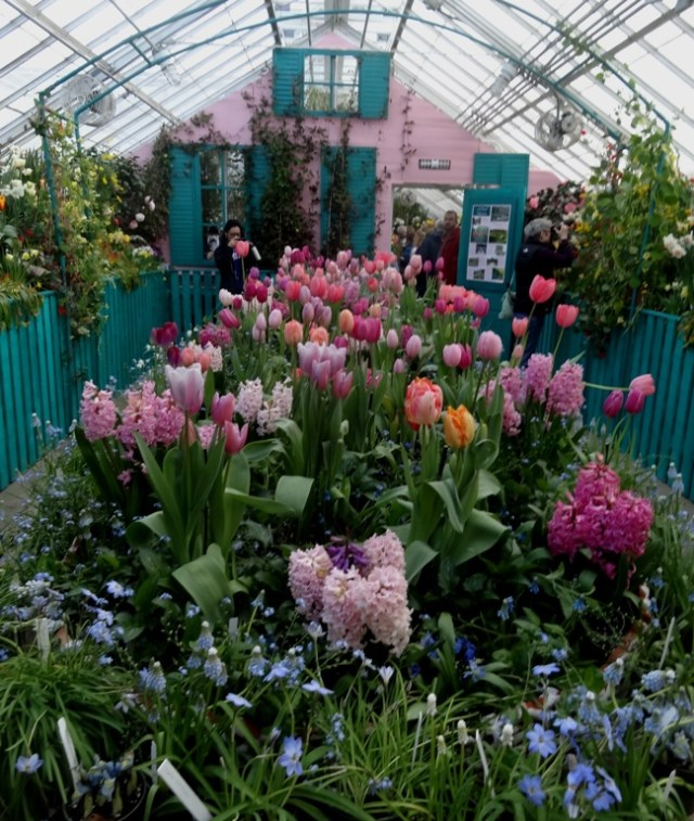 Smith College Bulb Show 2015