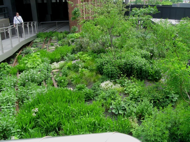 High Line Garden