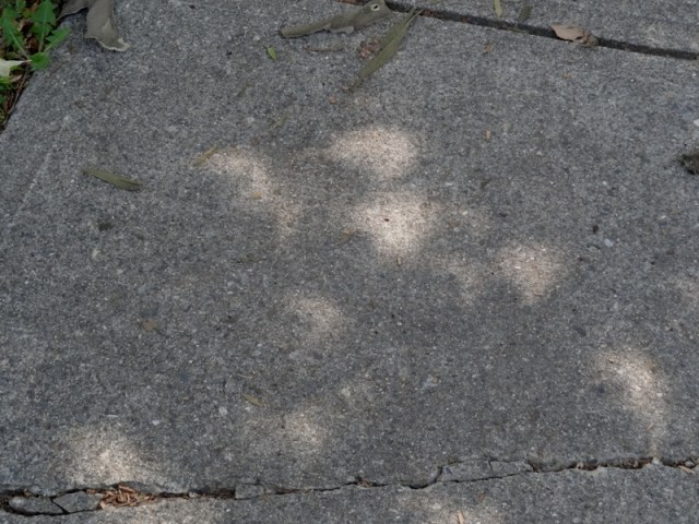 Eclipses on the sidewalk