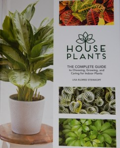 House Plants: The Complete Guide