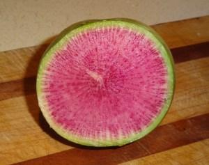 Beauty Heart Radish AKA Watermelon Radish