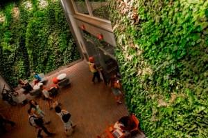 Living Walls Harvard University