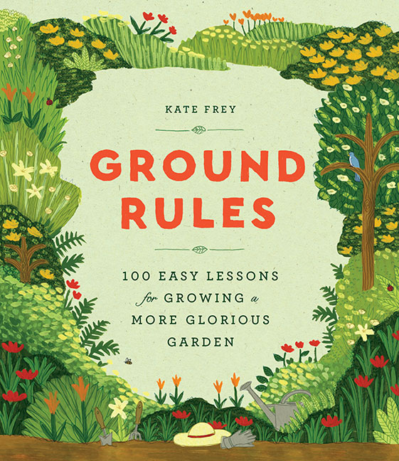 Ground Rules by Kate Frey