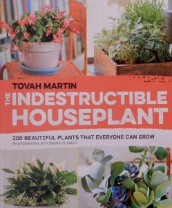 Indestructible Houseplant