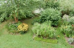 August garden in 2020