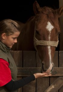 How to write a book - A girl and her horse.