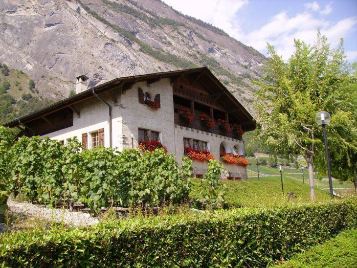 Appel en 2008 à Leytron - Valais (la Cure).