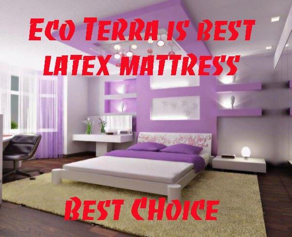Eco Terra Mattress Reviews