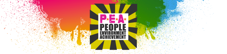 Brighton and Hove Wood Recycling Project shortlisted in P.E.A. awards