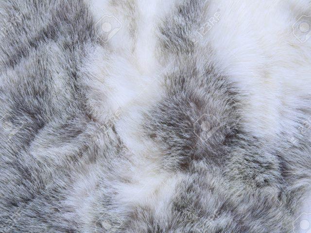 Cmo limpiar una prenda de piel de conejo