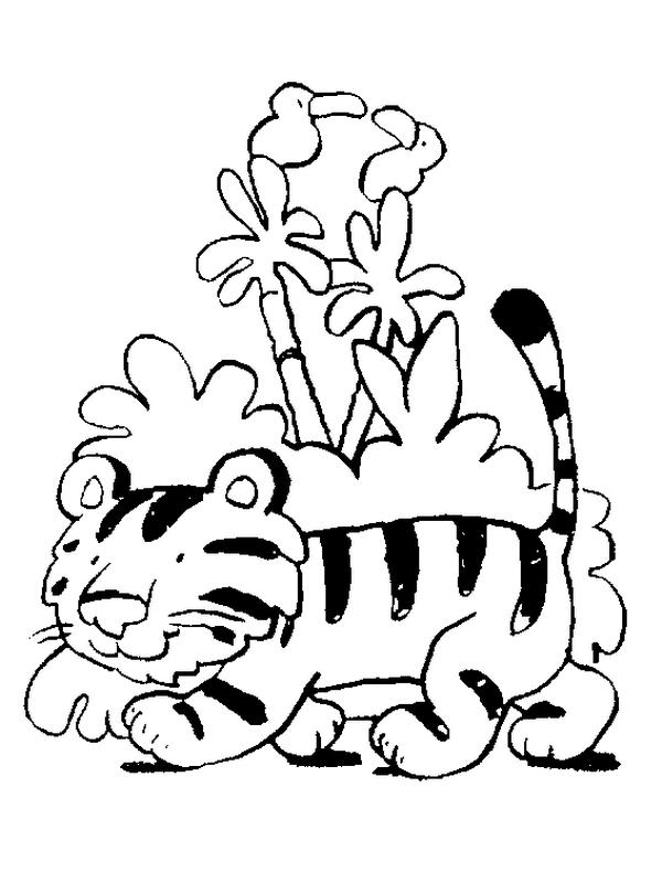 Tigre Para Colorir E Imprimir Muito Fcil Colorir E Pintar