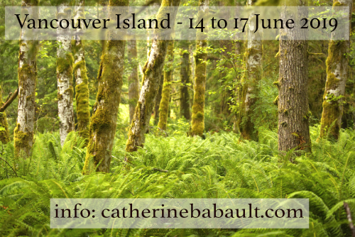 Vancouver Island Nature Photo Workshop