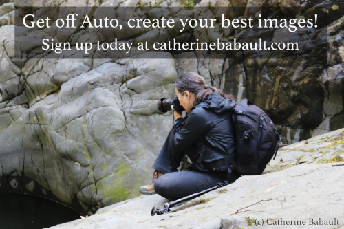 Get off Auto, create your best images!