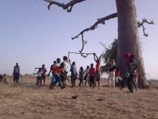 branca danse nature baobab3